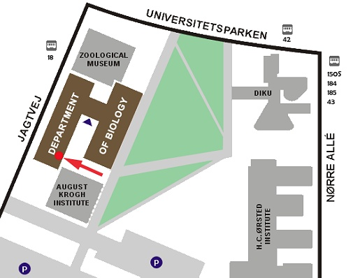 plan of the university park